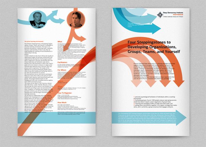 DDI brochures